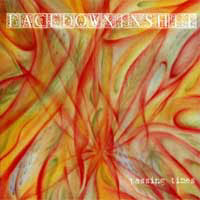 Face Down In Shit - Passing Times (cd)