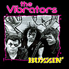 Vibrators - Buzzin (cd)
