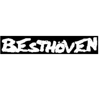 BESTHOVEN - Name - Patch