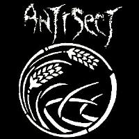 ANTISECT - Back Patch