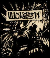 INDIGESTI - Patch